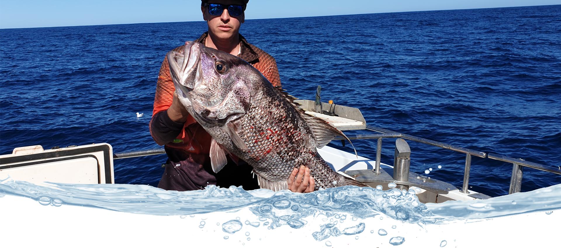 ABROLHOS FISHING